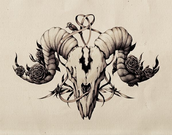 Ink pen skull drawing. by Maria Tiurina, via Behance Aries at its finest