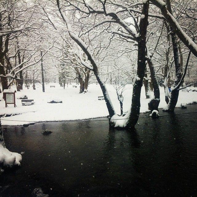 #nature #naousa #snow #river #ice