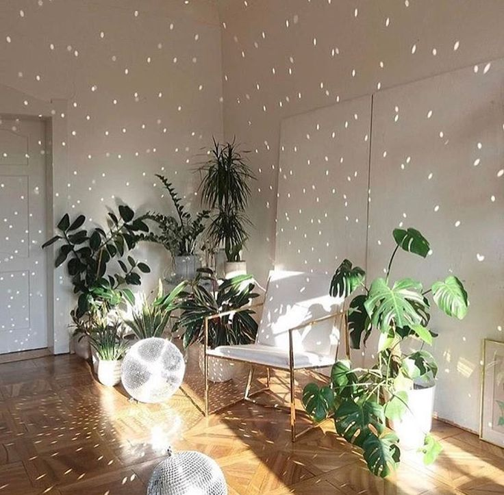 Plant party ☆ Join our Pinterest Fam: @SkinnyMeTea (140k+) ☆ Oh, also use our code 'Pinterest10' for 10% off storewide x