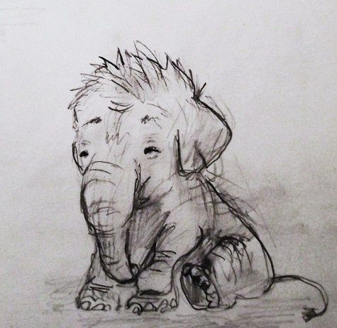 Baby Elephant Drawing. day-dream-believer