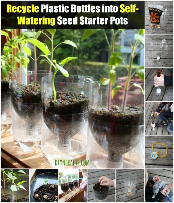 Recycle Plastic Bottles into Self-Watering Seed Starter Pots - Brilliant idea!