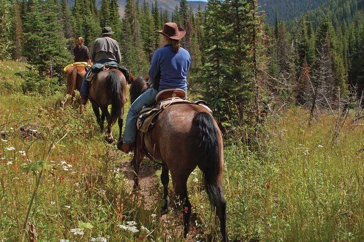 25+ best ideas about Horseback Riding Tips on Pinterest ...
