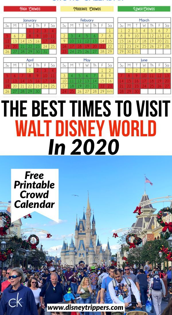 The Best Times To Visit Walt Disney World In 2020 Disney World