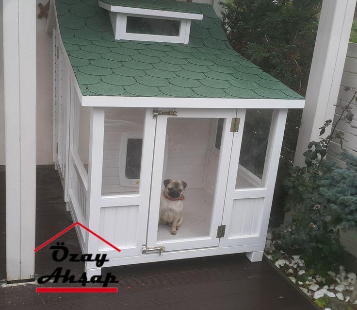 Köpek Kulübesi : Köpek Kulübesi - 04