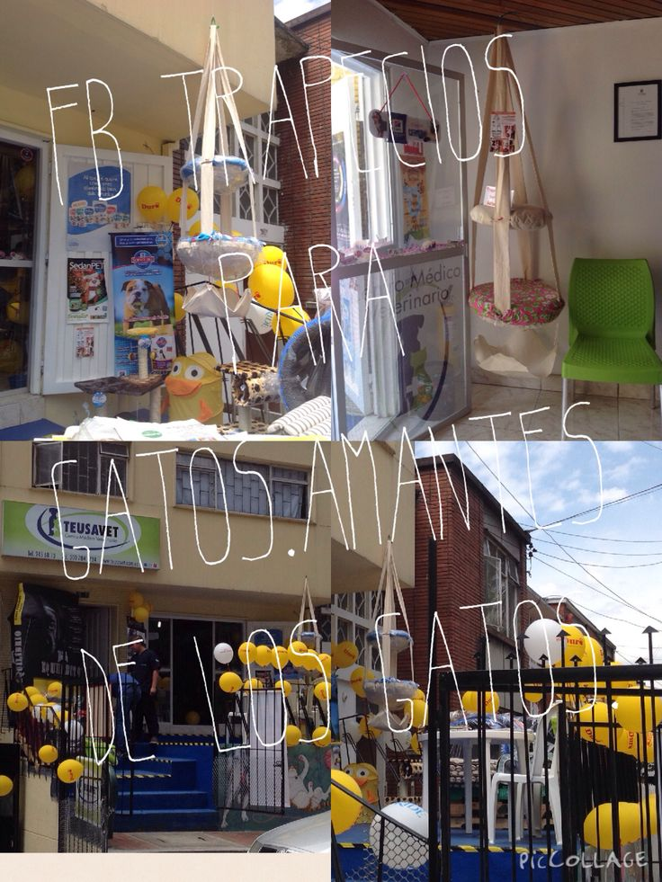 Bogota tel 3007927120