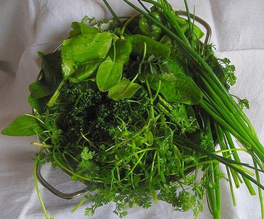 lots of info on different herbs and cooking with herbs