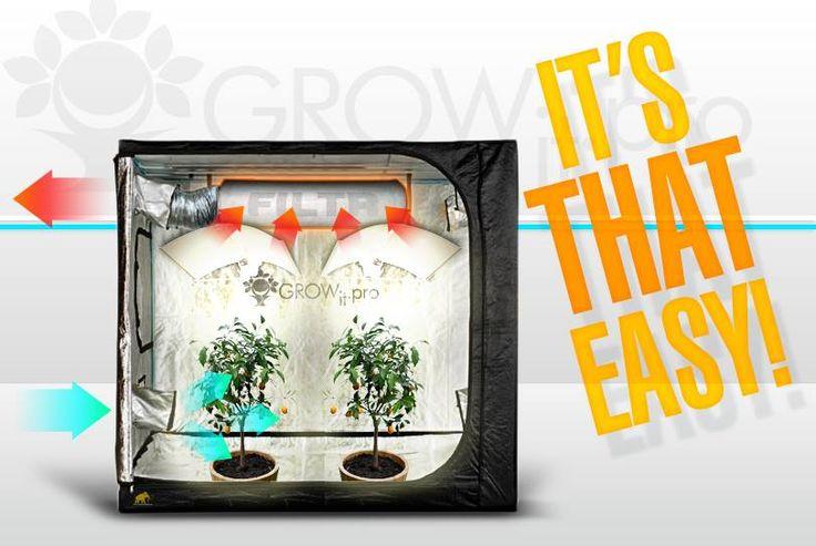 Schemat działania growboxa. Sprawdź jakie to proste!