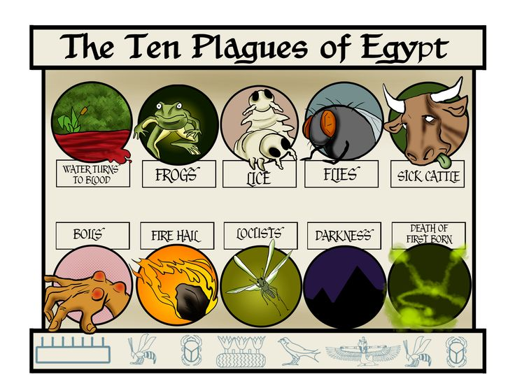 the exodus the ten plagues of The story of the ten plagues of egypt, with moses leading the jewish people to  freedom.