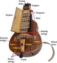 Hurdy gurdy  Like the sound of this one, I suggest listen to it in any song of Eluveitie