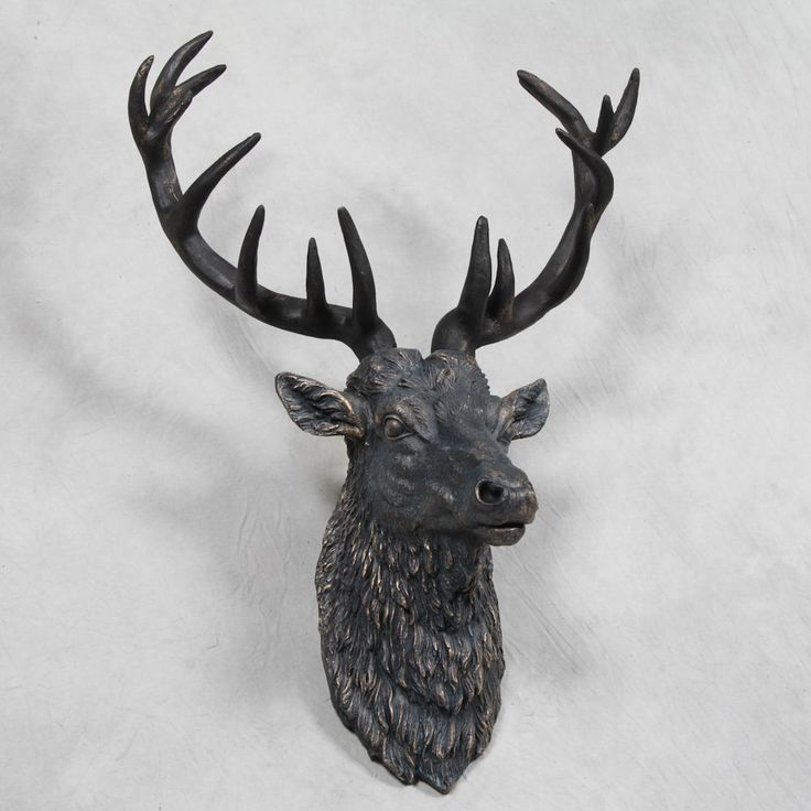 1000 Ideas About Mounted Deer Heads On Pinterest