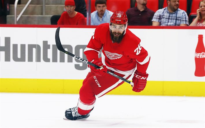 Download wallpapers Luke Witkowski, American hockey player  National Hockey League, NHL, Detroit Red Wings, Ice Hockey