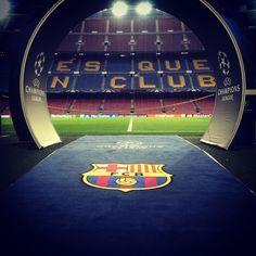"""The UEFA Champions League is back at Camp Nou La Champions torna al Camp Nou La Champions vuelve al Camp Nou #matchday #FCBBATE #ucl #fcblive"""