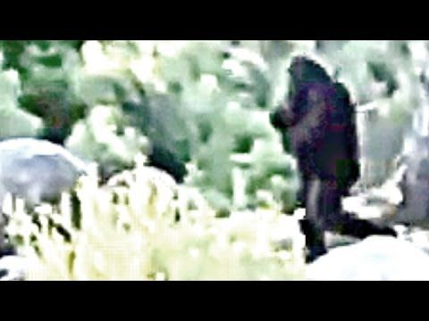 A closer look - Bigfoot filmed Independence Day..thinker thunker...