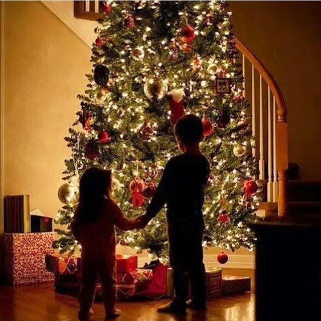 ✨✨ #christmas #christmastree #christmastime #snow