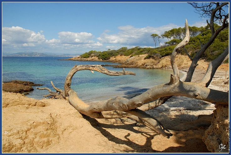 17 best ideas about ile de porquerolles on pinterest la provence marseille cote d azur - Image de plage paradisiaque ...