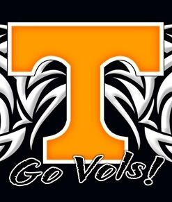 Go Go Vols basketball!