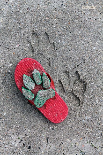 fun tracking trick while camping with kids just buy a second  cheap pair of flip flops and cut out the track you want hot glue and go..............I'd love to do this my youngest grandkids!