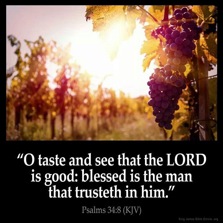 Psalms 34:8 (KJV)  8 O taste and see that the Lord is good: blessed is the man that trusteth in him.