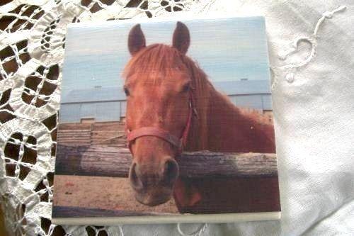 Horse Ceramic Tile Coasters Set of 4 Horses by naturepoet on Etsy