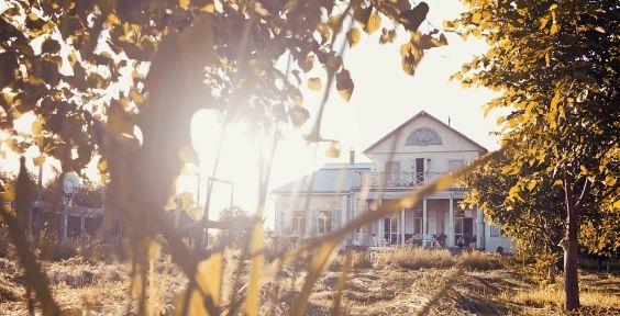 Поехать в Пушкинские Горы на длинные выходные — Seasons Life!