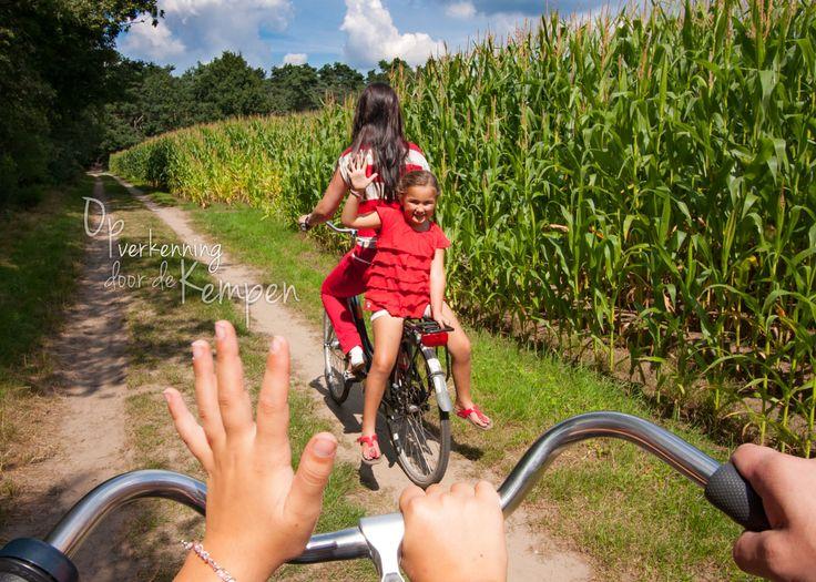 Beste Kindercamping de Paal Nederland De Paaldreef 15  5571 TN BERGEIJK
