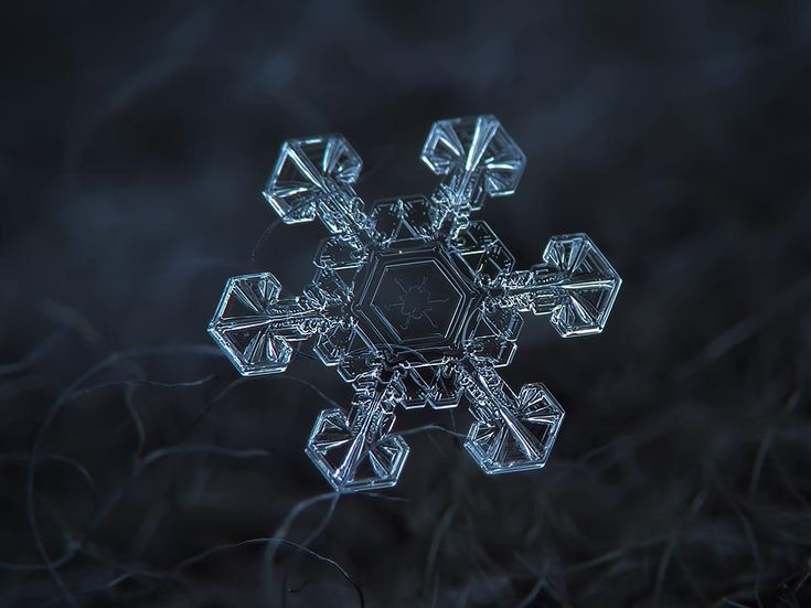 snowflake closeup alexey kljatov 09