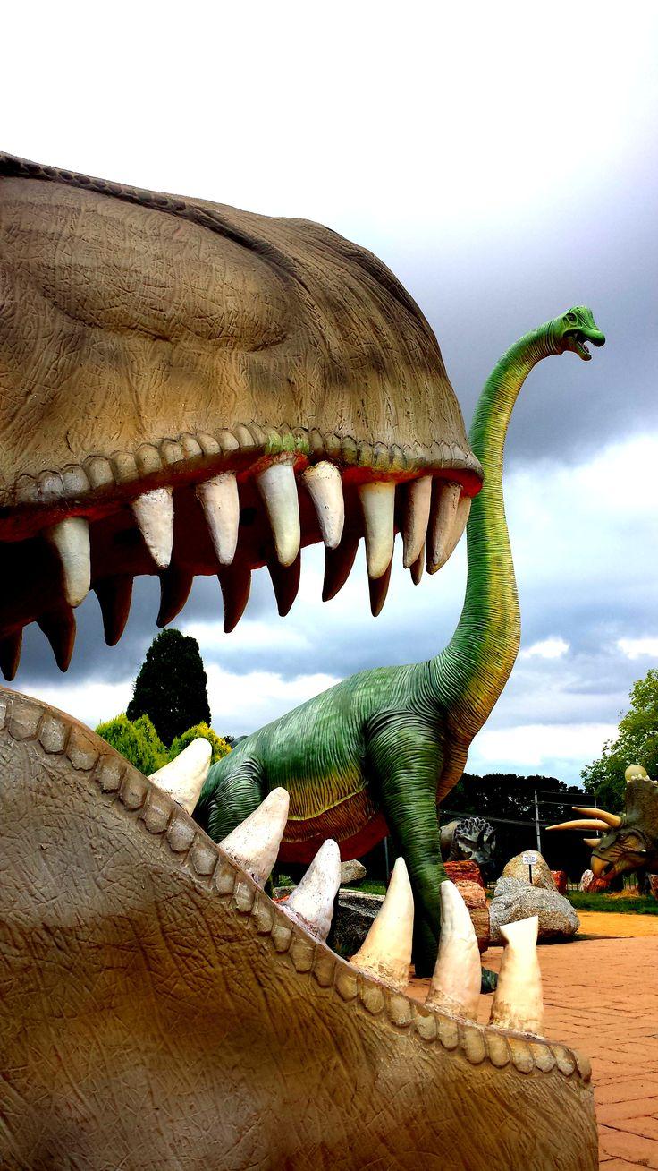 Dinosaur Museum, Canberra