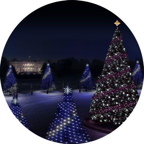 Christmas Trees Careers