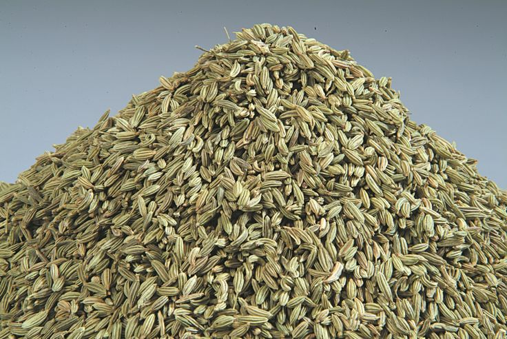 Organic Products India is renowned Fennel seeds exporter and supplier in India. Fresh high quality organic fennel seeds are available bulk in container or custom packaging options.
