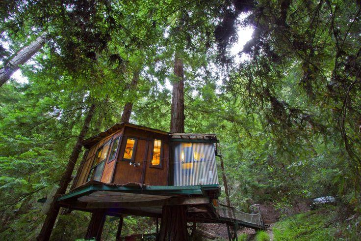 Redwood Treehouse Santa Cruz Mtns Treehouses Pinterest And Hotel