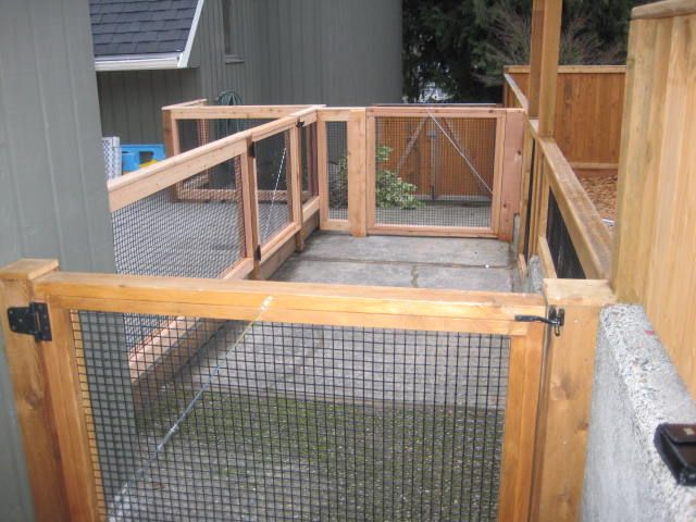 Fence for the dog yard