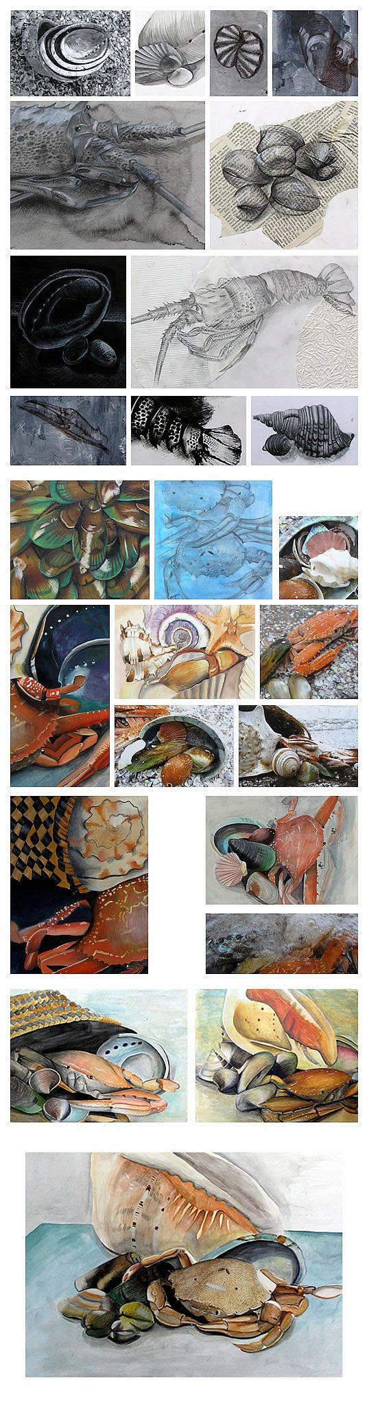 Natural Forms: A beautiful International GCSE Art Exam