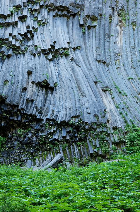 """After dropping nearly 1,500 feet in elevation in over 2 miles, the hiker reaches a junction with the South Puyallup Trail. Take a moment to visit the remarkable andesite columns known as The Devil's Pipe Organ located just 0.1 miles west from the Wonderland Trail on the South Puyallup Trail."" - http://www.wonderlandtrailguide.com"