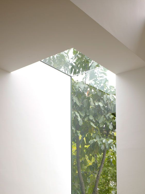 | WINDOWS | Photo Credit #CoffeyArchitects when skylight meets glazing, window frames are completely concealed