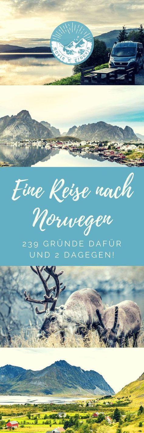 Reise nach Norwegen: 239 Gründe dafür – tari23