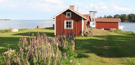 Mittsommer auf den Schären: Schwedens blumige Sommersause - SPIEGEL ONLINE - Nachrichten - Reise