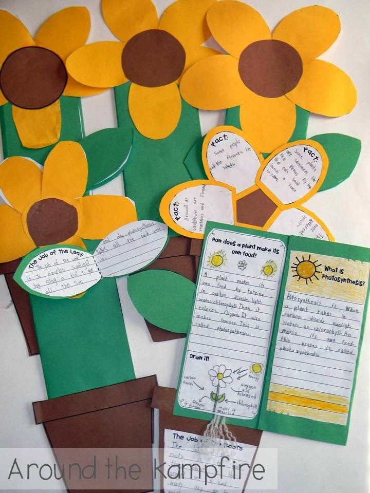 Fun ways to get kids writing about science during a plant life cycle unit.