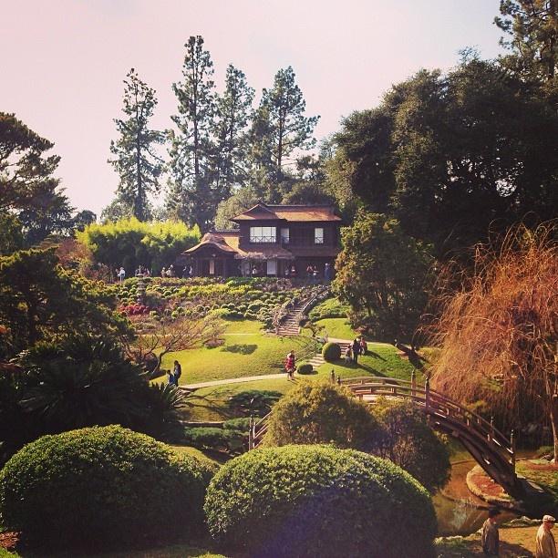 Huntington Gardens Pasadena Ca Los Angeles Pinterest