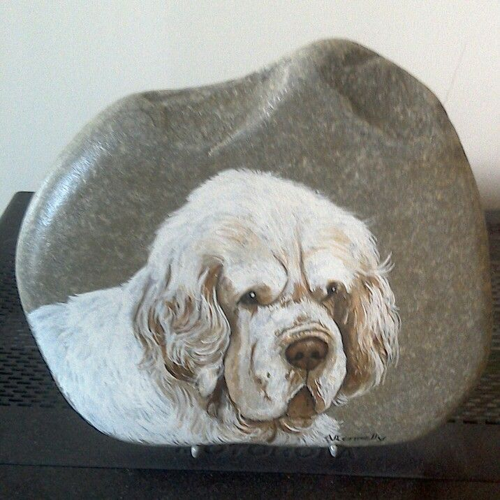 Clumber Spaniel Painting On A Flat Stone In Memory Of My