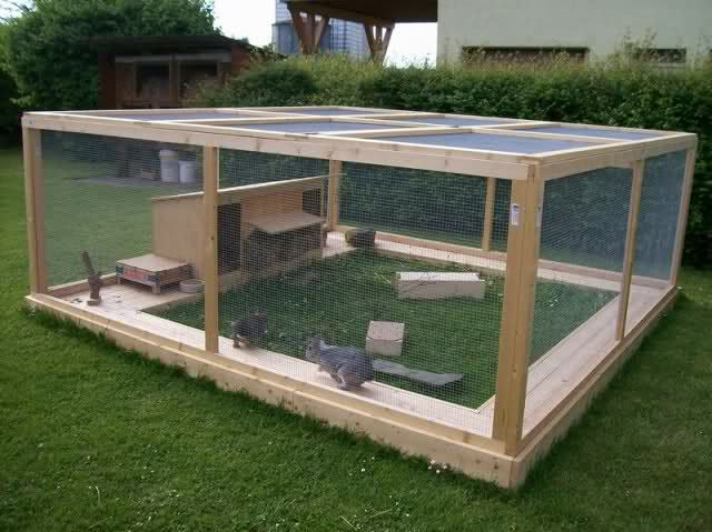 Rabbit enclosure ideas Forum by sweetrabbits - made with Forum101 by worldweb