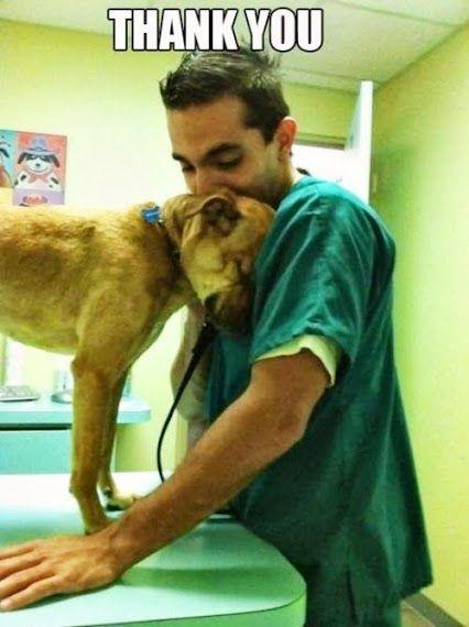 Animal Lovers - Community - Google+   ♥♥  aaaah!!