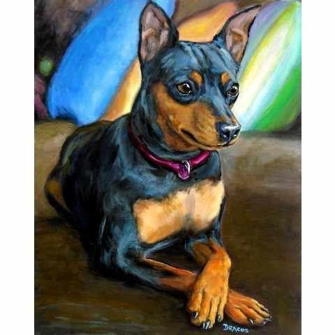 Miniature Pinscher Dog Art Print Painting by Dottie Dracos, Minpin Formal with Pillows