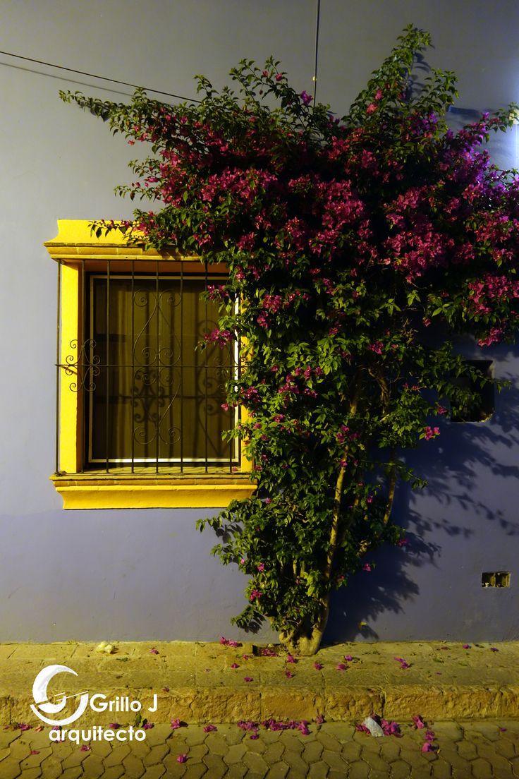 Tequisquiapan de noche, Querétaro