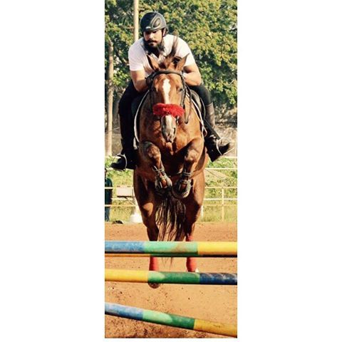 Broken Horses  Many have advised me to get fancy, trained and fit horses from abroad and win medals. I have never been attracted