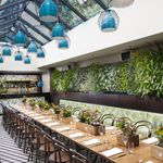 The Botanical's gorgeous dining room