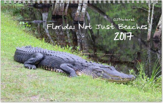 Florida Calendar, 2017 Calendar, Calendar with Holidays, Calendar Gift, Year Long Calendar, Christmas Gift, Picture Calendar, Year Calendar