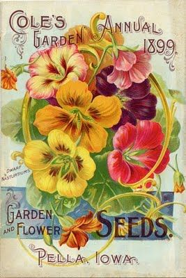 Vintage Flower Seed Packet - I was surprised to see Pella, Iowa on this packet, my Sister-In-Law went to college there.