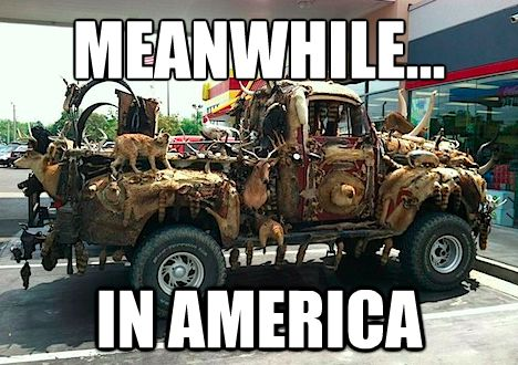 Meanwhile, in America   50 Funniest Meanwhile, in America Meme Pics & Gifs (Page 48)
