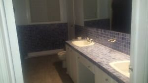 Extra large 3 bedroom flat Truro Nova Scotia image 3