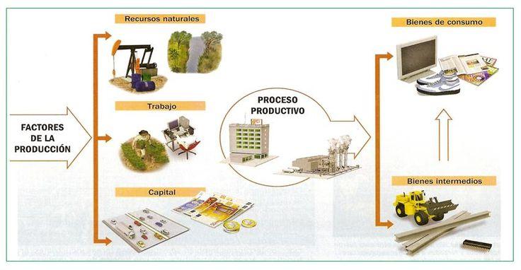 Proceso productivo capital materia prima y bien servicio for Procesos de produccion de alimentos